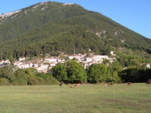 Il Parco nazionale D'Abruzzo